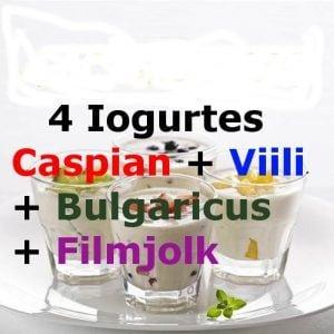 4 Iogurtes Infinitos – Caspian + Viili + Bulgaricus + Filmjolk – com Frete Grátis