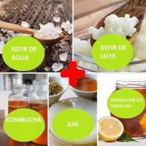 Combo – Kefir de Água + Kefir de Leite + Kombucha + JUN + Kombucha do Himalaia – com Frete Grátis