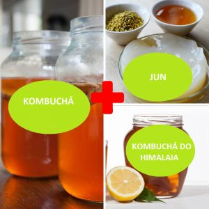 Combo – Kombucha + JUN + Kombucha do Himalaia – com Frete Grátis